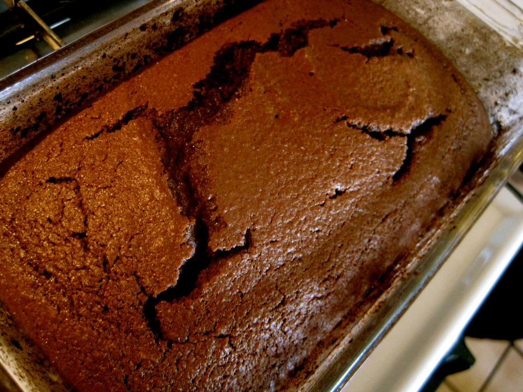 Chocolate Chickpea Cake — Rhyann's (Rad)ventures